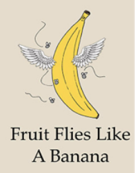 banana is flying